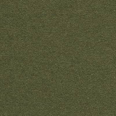 Divina 3 grün 0984