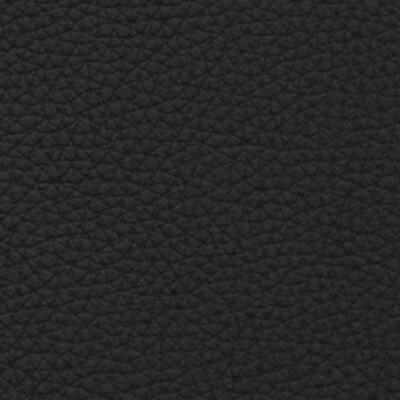 Basic Leder schwarz