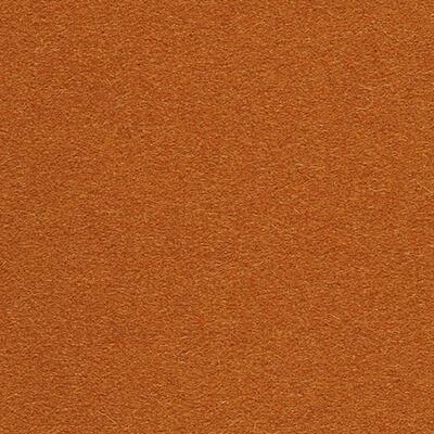Divina 3 apricot 0552