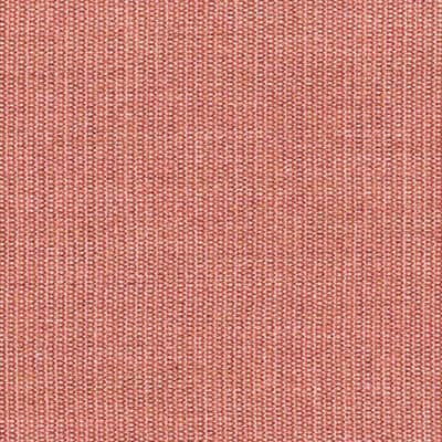 Canvas 2 rosa 0566