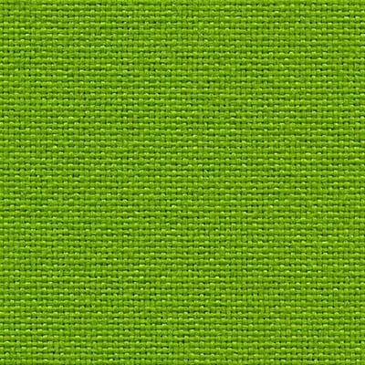 Plano avocado