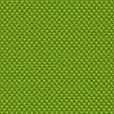 Nova avocado