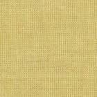 Canvas 2 gelb 0446